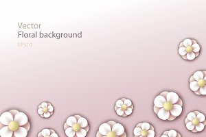 Floral background. Spring flowers