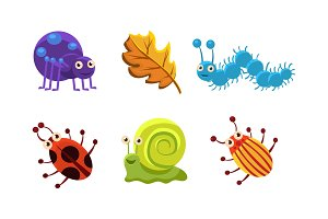 Flat vector set of insect and