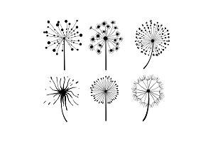 Vector set of 6 dandelions in
