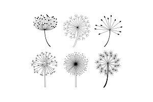 Vector set of dandelion flowers