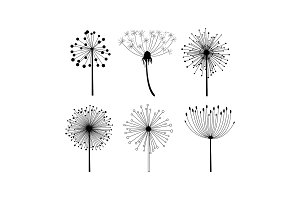 Vector set of 6 linear dandelion