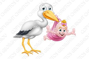 Stork Cartoon Pregnancy Myth Bird