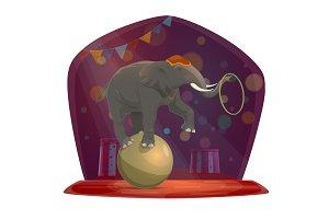 Circus, elephant on ball, chapiteau