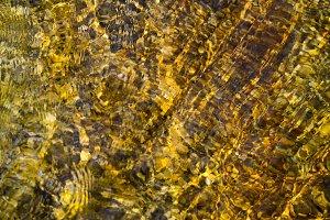 Shiny Liquid Gold