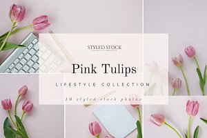 Pink Tulips Vol 1 Photo Collection