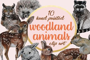 Woodland Animals Watercolor Clip Art