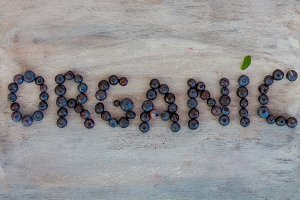 Organic Text