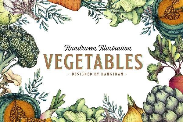 Illustrations: HangTran - Vegetables Illustration