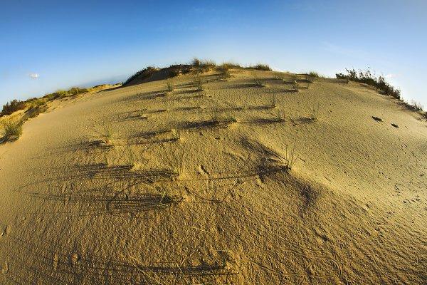 Sandy dunes at coast of Mediterrane…