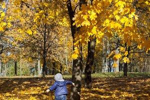 boy foliage park fall