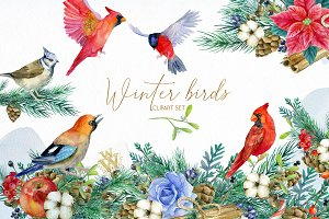 Winter birds, Christmas clipart