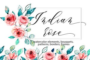 Set Indian rose, watercolor drawing.