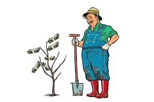 old gardener grows dollars on a tree