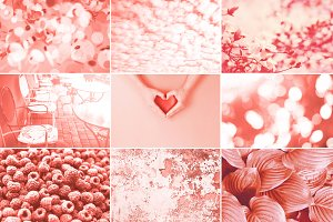Collage in Living Coral color