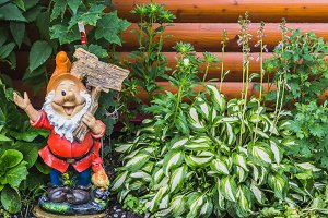 A beautiful gnome garden figure and
