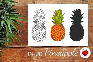 Pineapple. Hand drawn vector.