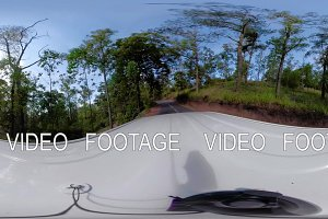 Rainforest Landscape vr360 Indonesia