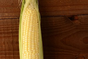 Single Ear of Corn