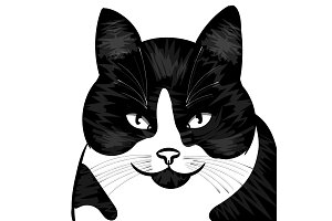 The Vector logo cat for T-shirt