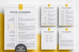 Professional Resume Template 4 Page