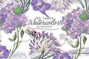 Violet flower's