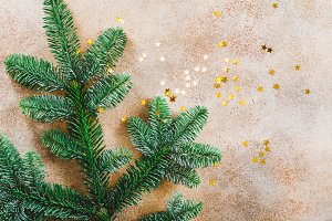 Fir branch and golden stars