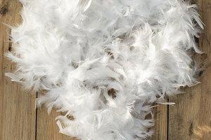 Feather white hart shape