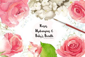 ROSES, HYDRANGEAS & BABY'S BREATH