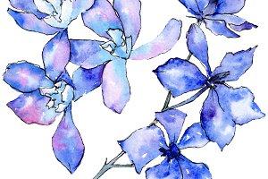 Purple orchid flower. Watercolor bac