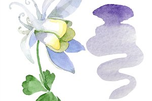 Floral watercolor on white