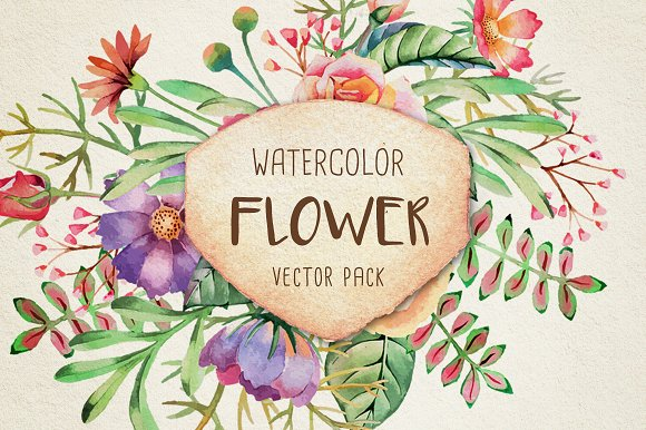 Watercolor Flower Vector Pack Illustrations Creative Market