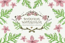 Botanical Watercolor