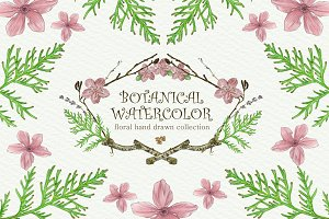 Botanical Watercolor