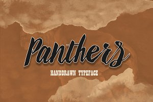 Panthers  25% off