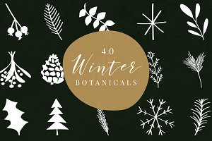 40 Winter Botanicals