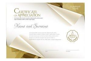 Certificate281
