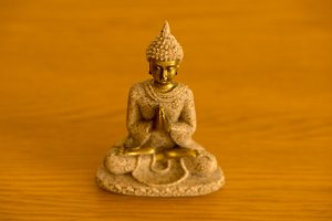 The figure of a Buddha meditating