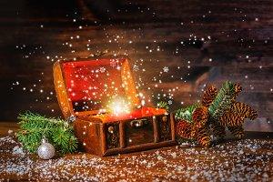 Christmas winter fairy