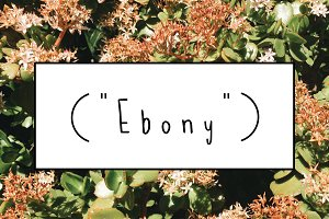 EBONY - a handwritten font