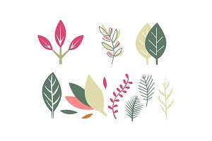 Flat vector set of leaves of