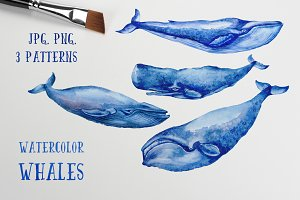 Watercolor Whales & Patterns