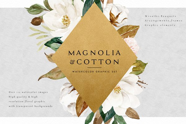 Graphics: Graphic Box - Magnolia&Cotton