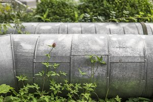 Industrial metal gas pipe in a green