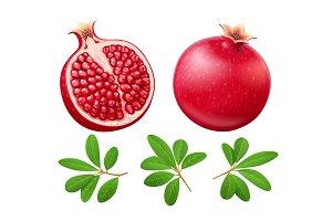Set of Ripe juicy pomegranate. Fruit