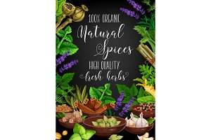 Spices, herbs and seasonings vector