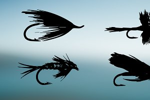 Fly Fishing Fly Vector Silhouettes
