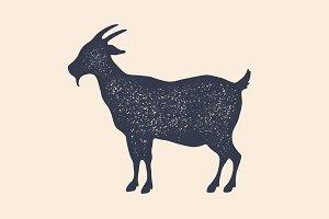 Goat. Vintage logo, retro print