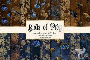 Birds of Prey Digital Paper