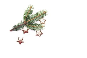 Christmas composition on white