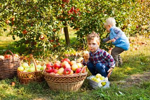 Little girl and boy play in apple